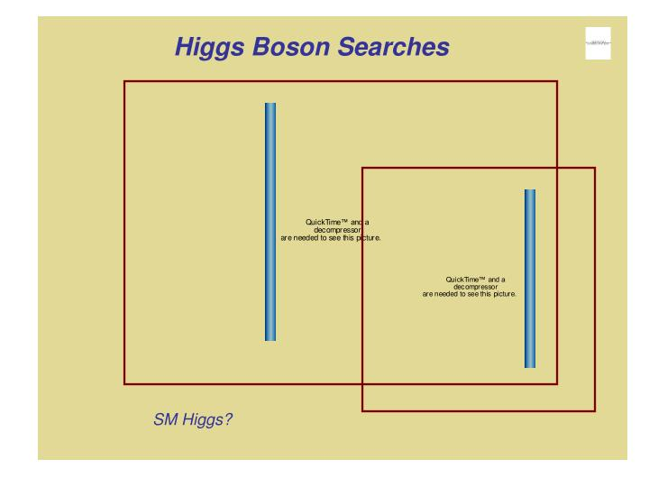 Higgs Boson Searches