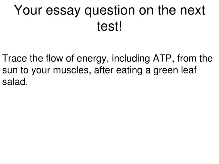 Your essay question on the next test!