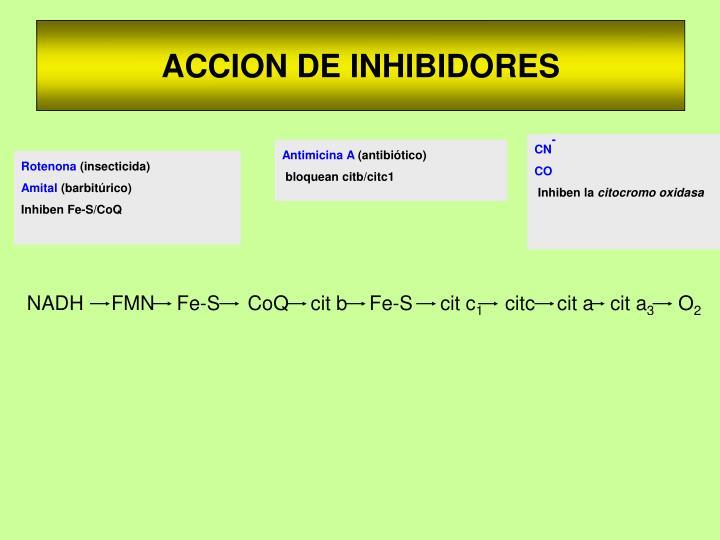 ACCION DE INHIBIDORES