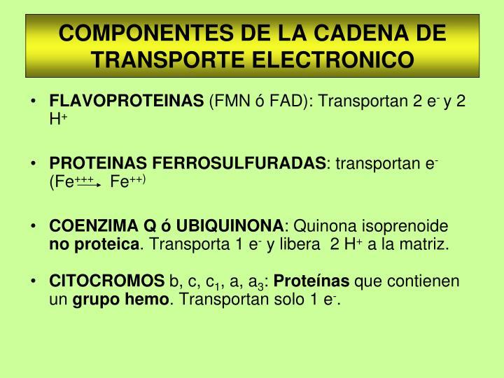 COMPONENTES DE LA CADENA DE TRANSPORTE ELECTRONICO