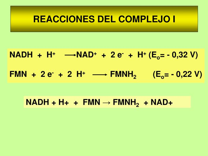 REACCIONES DEL COMPLEJO I