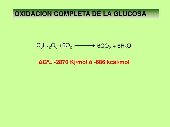OXIDACION COMPLETA DE LA GLUCOSA
