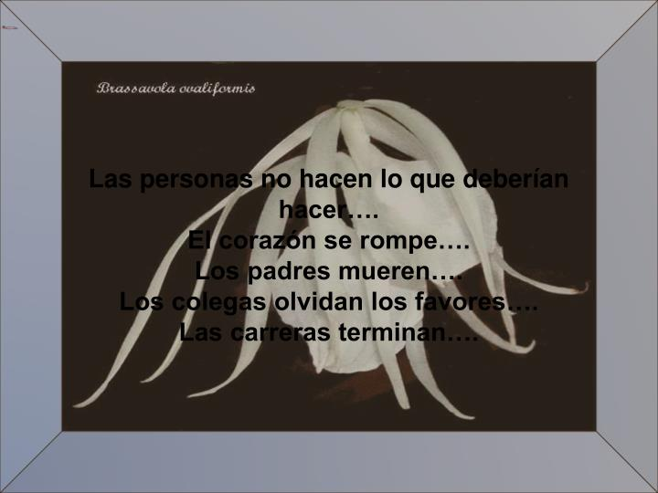 Las personas no hacen lo que deberían hacer….