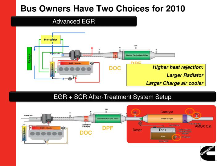 Bus Owners Have Two Choices for 2010