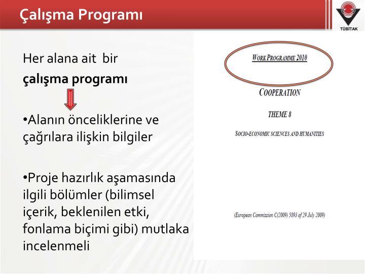 Çalışma Programı