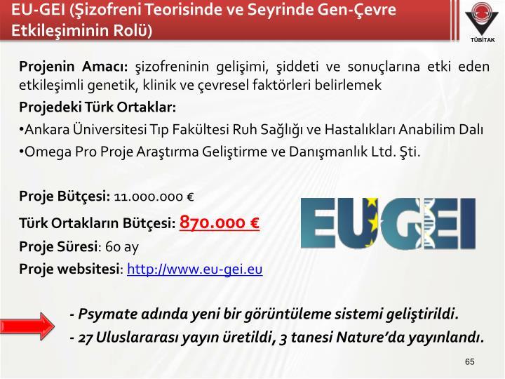 EU-GEI (Şizofreni Teorisinde ve Seyrinde Gen-Çevre Etkileşiminin Rolü)
