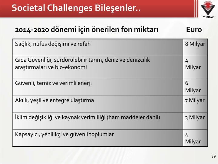 Societal Challenges Bileşenler..