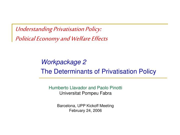 Understanding privatisation policy political economy and welfare effects