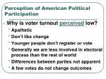 perception of american political participation
