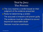 trial by jury the process