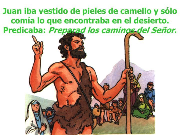 Juan iba vestido de pieles de camello y sólo comía lo que encontraba en el desierto. Predicaba:
