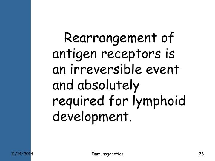 Rearrangement of antigen receptors is an irreversible event and absolutely required for lymphoid development.