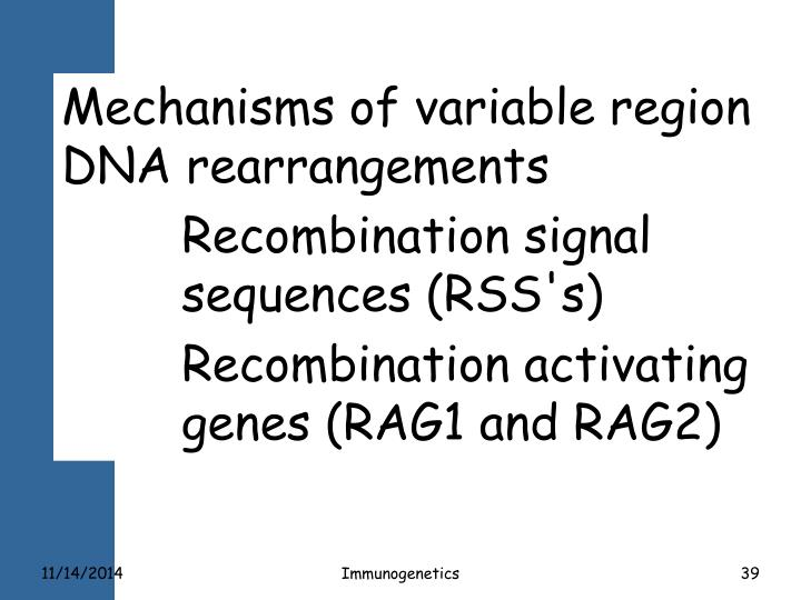 Mechanisms of variable region DNA rearrangements