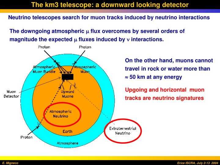 The km3 telescope: a downward looking detector