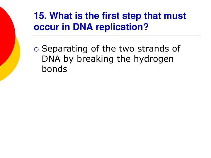 15. What is the first step that must occur in DNA replication?