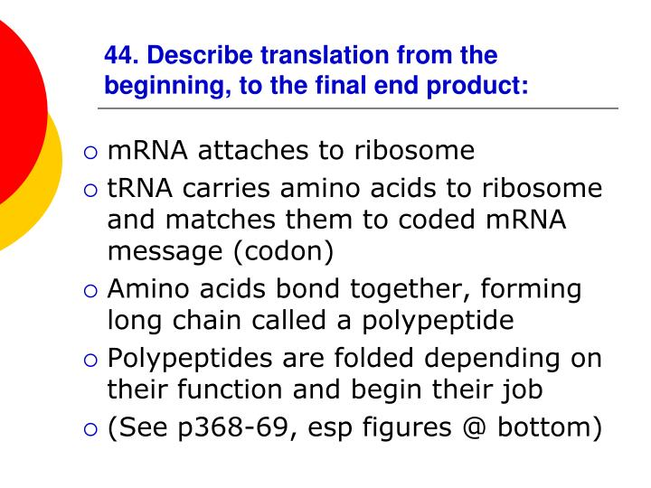 44. Describe translation from the beginning, to the final end product: