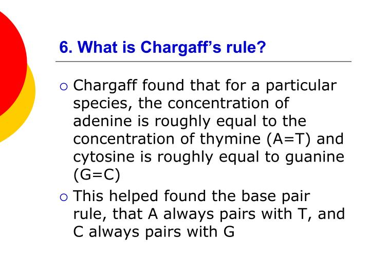 6. What is Chargaff's rule?
