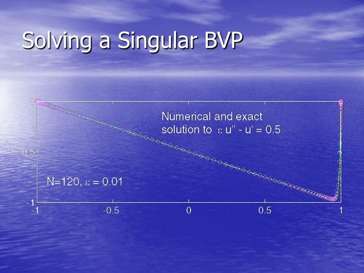 Solving a Singular BVP