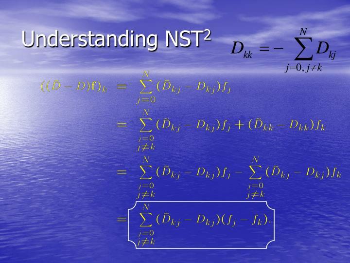 Understanding NST