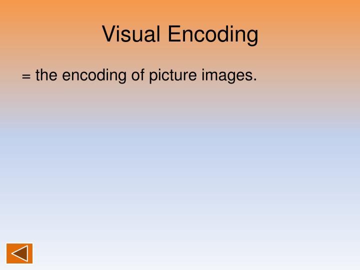 Visual Encoding