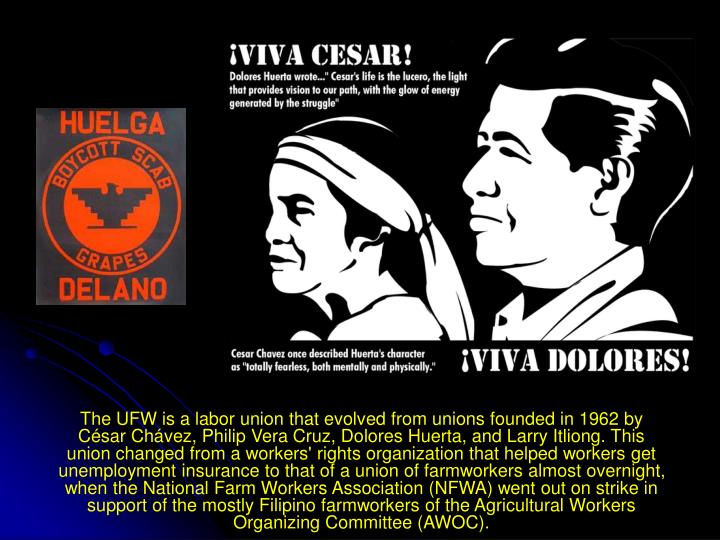 The UFW is a labor union that evolved from unions founded in 1962 by César Chávez, Philip Vera Cruz, Dolores Huerta, and Larry Itliong. This union changed from a workers' rights organization that helped workers get unemployment insurance to that of a union of farmworkers almost overnight, when the National Farm Workers Association (NFWA) went out on strike in support of the mostly Filipino farmworkers of the Agricultural Workers Organizing Committee (AWOC).