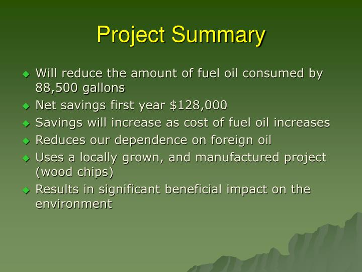 Project summary1