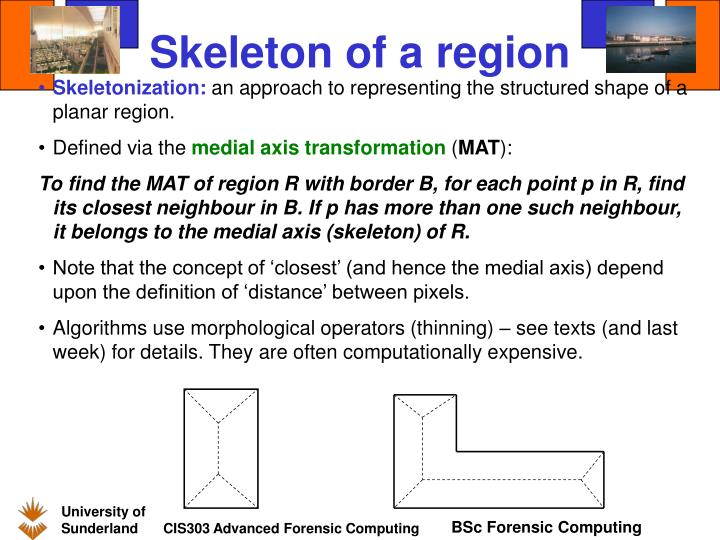 Skeleton of a region