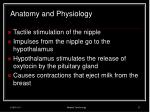 anatomy and physiology19