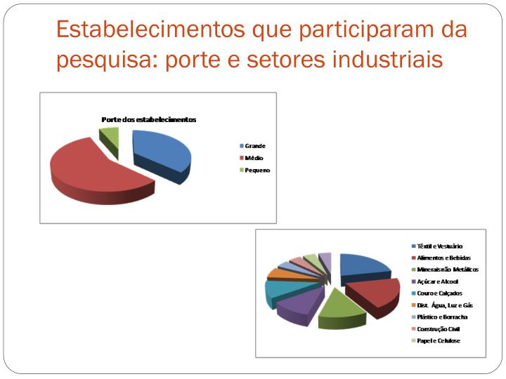 Estabelecimentos que participaram da pesquisa: porte e setores industriais
