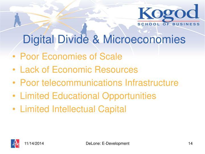 Digital Divide & Microeconomies