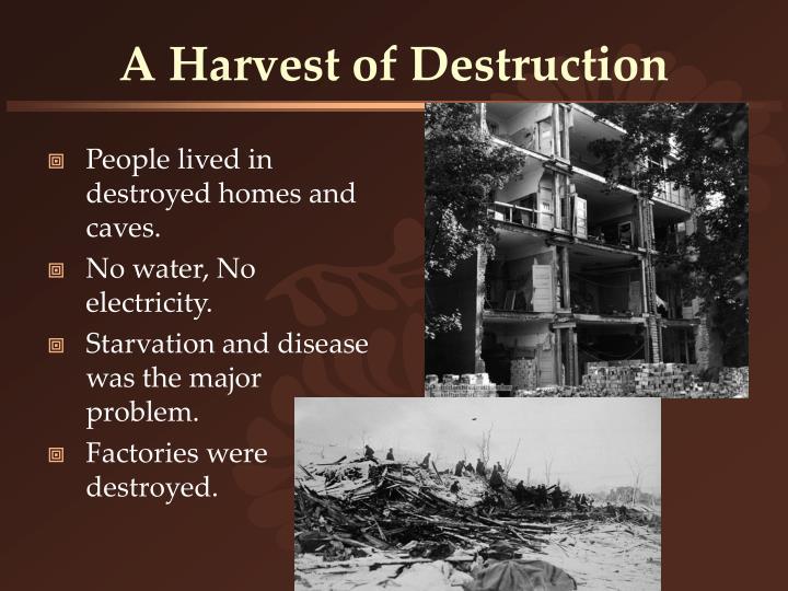 A Harvest of Destruction