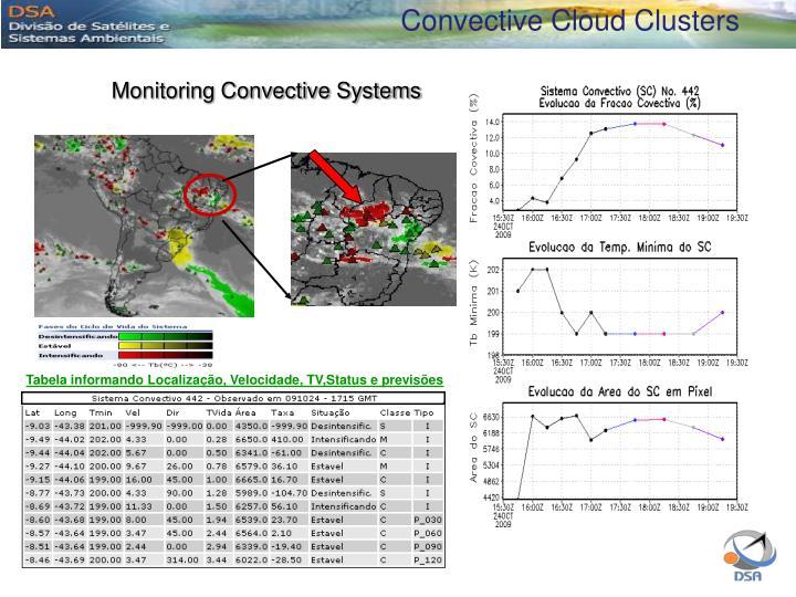 Convective Cloud Clusters