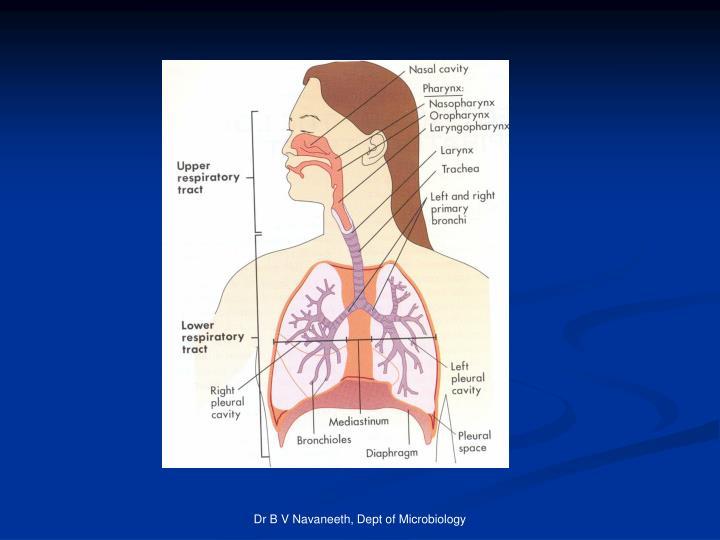 Dr B V Navaneeth, Dept of Microbiology