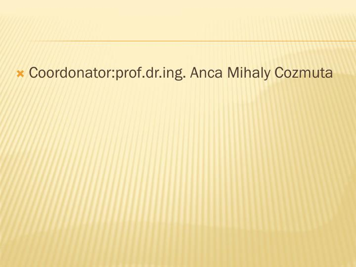 Coordonator:prof.dr.ing. Anca Mihaly Cozmuta
