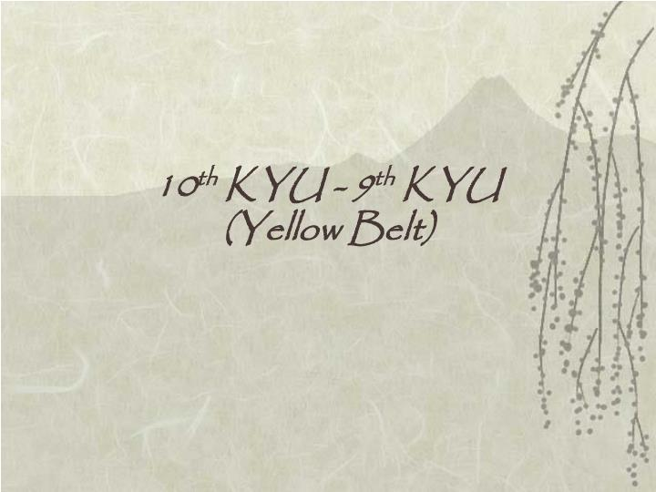 10 th kyu 9 th kyu yellow belt