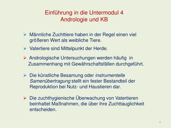 Einf hrung in die untermodul 4 andrologie und kb