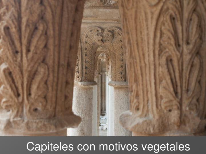 Capiteles con motivos vegetales