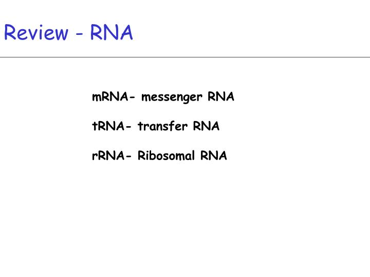 Review - RNA