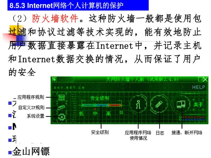 8.5.3 Internet