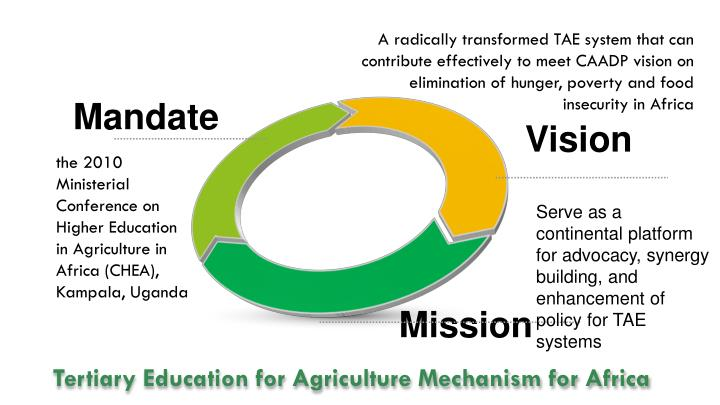 A radically transformed TAE system that can contribute effectively to meet CAADP vision on elimination of hunger, poverty and food insecurity in Africa