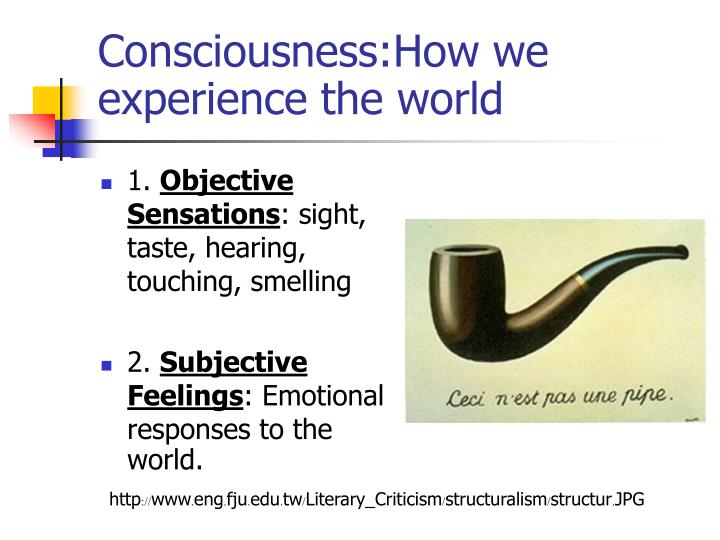 Consciousness:How we experience the world