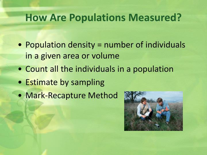 How Are Populations Measured?