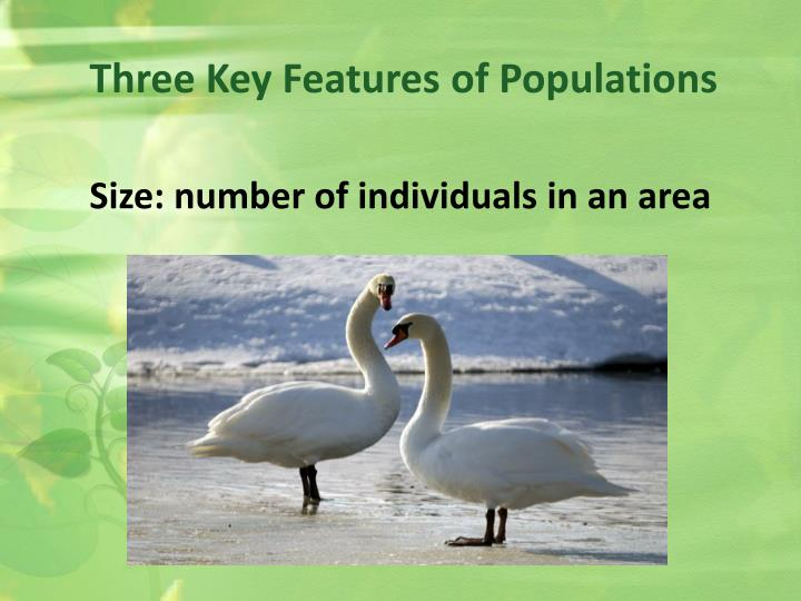 Three Key Features of Populations
