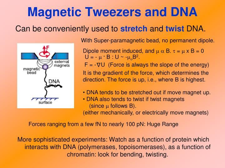 Magnetic Tweezers and DNA
