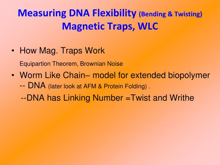 Measuring dna flexibility bending twisting magnetic traps wlc
