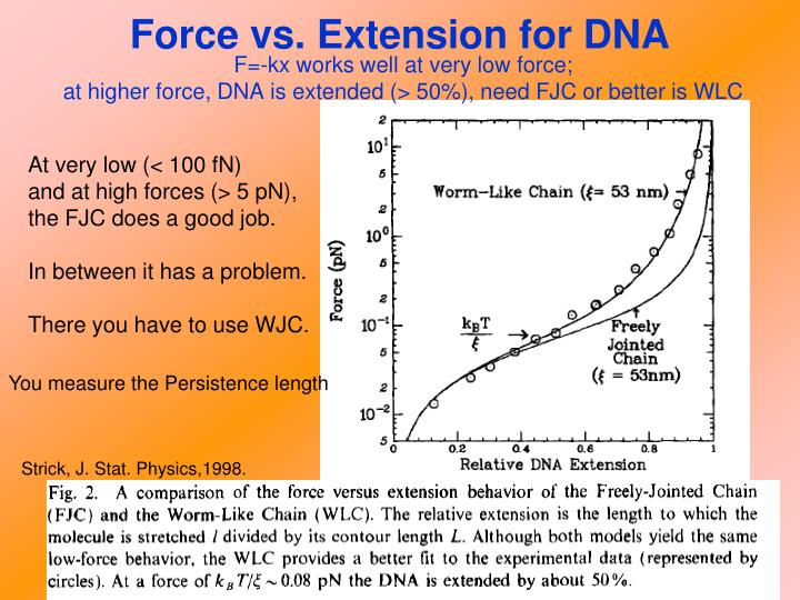 Force vs. Extension for DNA