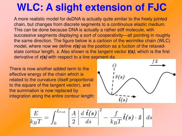 WLC: A slight extension of FJC