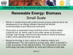 renewable energy biomass