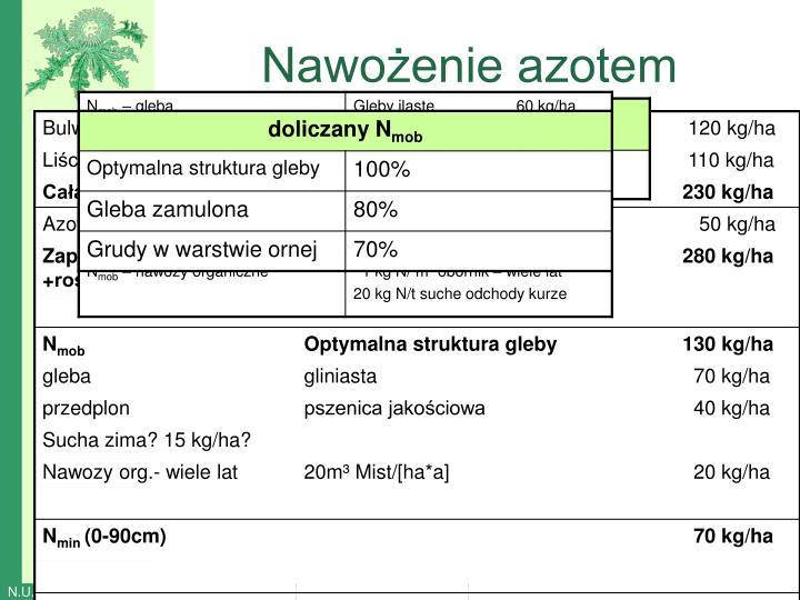 Nawożenie azotem