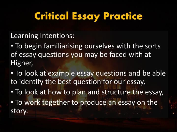 Critical Essay Practice